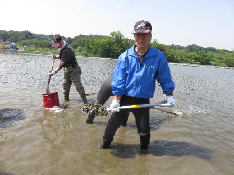 簡易魚道設置砂利取り作業